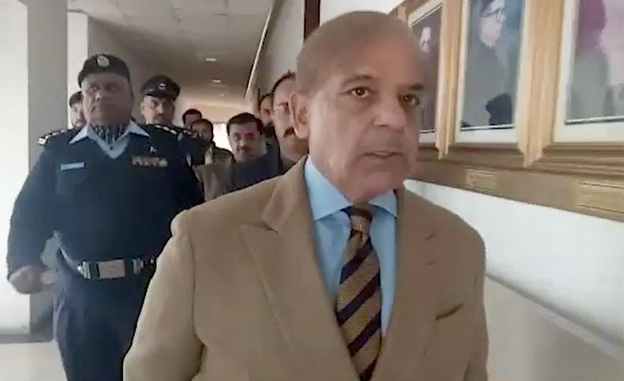 LHC dismisses NAB's plea to transfer bail application of Shehbaz Sharif