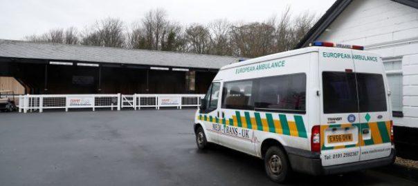 equine influenza British Horseracing Authority