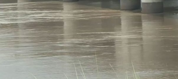 Indian minister, Nitin Gadkari, share of water