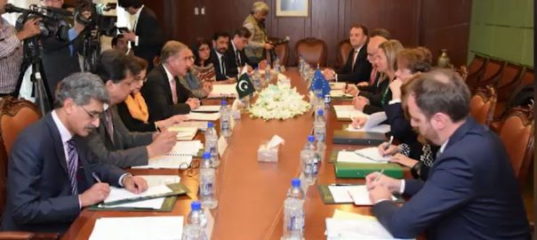 Pakistan, EU, long-term, partnership, bilateral, trade, energy