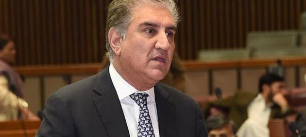 Qureshi Shah Mehmood Qureshi FM Indian Pilot Bilawal Shehbaz SHarif Opposition Foreign policy