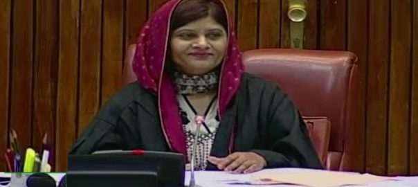 Senate chairman, seat, Krishna Kumari, Int'l Women's Day