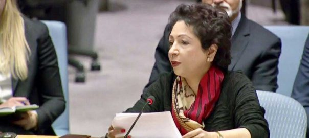 Maleeha resolutions Maleeha Lodhi UNSC Unted Nations Security Council General ssembly council parliaments Lodhi Pakistanterror challenges Chin's Un Envoy Maleeha Lodhi Pakistan's Permanent Representative to UN international community Financing of terrorism