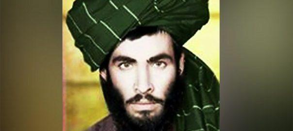 Taliban, Mullah Omar, US bases, eight years, book