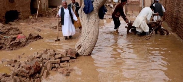afghanistan flood National Disaster Management Authority. Dr. Abdul Hakim Tamana emergency services