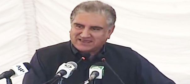 FM FM Qureshi Shah Mehmood QUreshi Health package Modi Indian Prime Minister Narendra Modi War peace