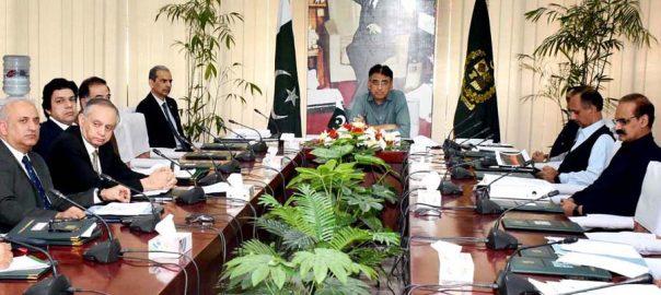 Experts, plan, revival, Pakistan Steel Mills, ECC