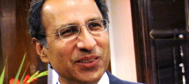 Hafeez Shaikh Dr Abdul Hafeez shaikh finance adviser fidous awan babar Dr Mirza cabinet IMF International monetary fund federal cabinet cabinet reshuffle