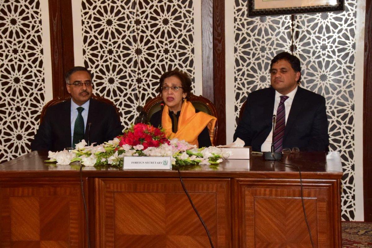 India failed to isolate Pakistan at international level: Tehmina Janjua