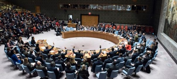 UN Security Council UAE United Arab Emirates United States Egypt france