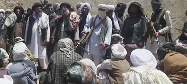 Taliban, team, Afghan, peace, talks, Qatar, women, spokesman