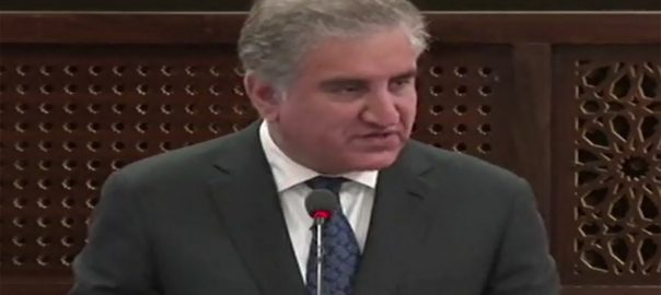 Continue, sincere, efforts, Afghan, peace, process, FM Qureshi