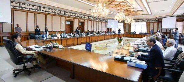 federal cabinet firdous ahiq Awan Kamyab Jawan Program Kamyab Jawan Jawan Pmimran khan Special Assistant PM special assistant