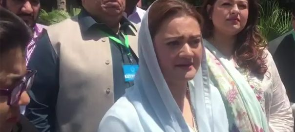 PML-N, announce, future, strategy, legal, consultation, Marriyum