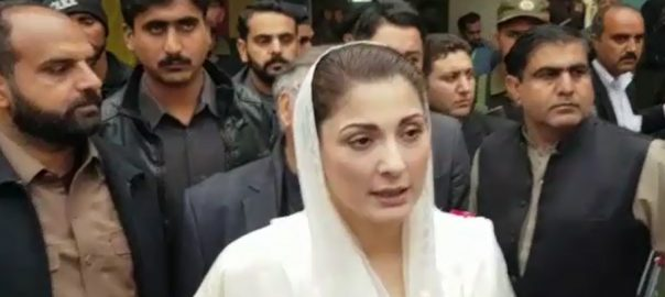 Maryam, issued, notice, plea, seeking, removal, PML-N vice president