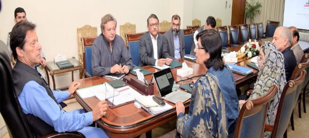 Ehsaas PM Prime Minister Imran Khan Ehsas Qarz-i-Hasna Scheme Prime Minister Ehsas project