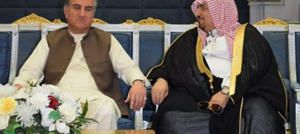 FM Qureshi, Jeddah, attend Foreign Ministers' Council of OIC meeting