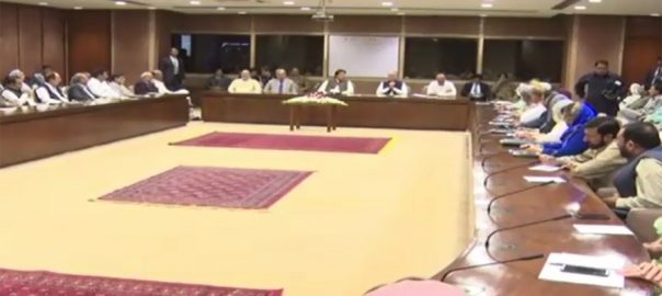 MNAs, speak out against, inclusion, unelected, people, cabinet