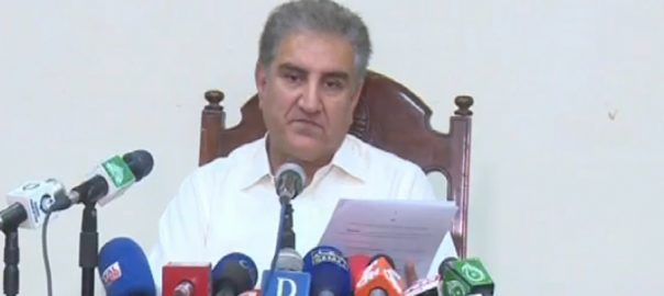 PML-N, majority, South Punjab, province, FM Qureshi