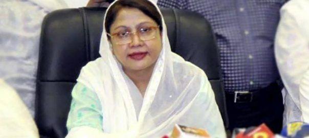 IHC, grants, bail, Faryal Talpur, fake, accounts, case