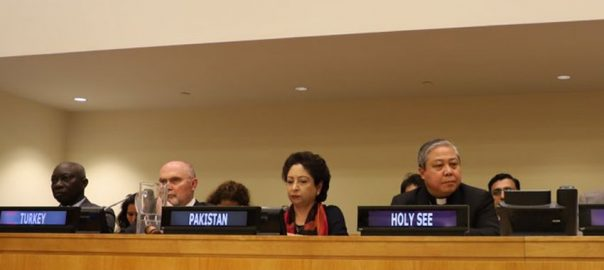 Pakistan UNGA UNSC Maleeha Lodhi right abuseshatred Maleeha Lodhi UN United nations pakistan faith-based hatred