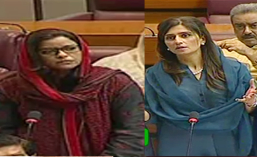 PM's speech at midnight is a matter of concern, Nafeesa tells in NA