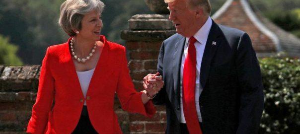 Donald, Trump, wades, Brexit, crisis, state visit