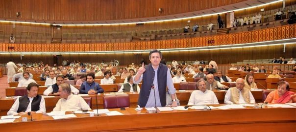 National Assembly, approves, budget, fiscal, year