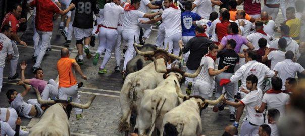 bull Spanish bull festival gored