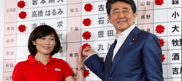 house majority Japan pro-constituion upper house majority