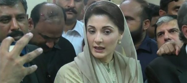 Maryam, Nawaz, Sharif, symbol, federation