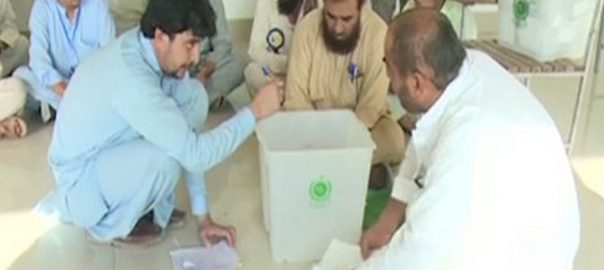 KP-tribal-polls