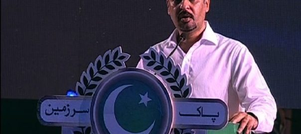 Mustafa Kamal illegal allotment PSP Pak Sarzameen Party pre-arrest bail