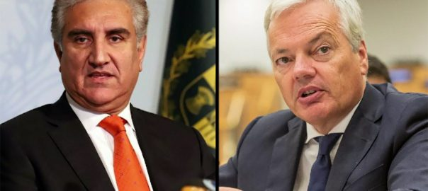 FM Qureshi, phones, Belgian, counterpart, discuss, IOK, situation