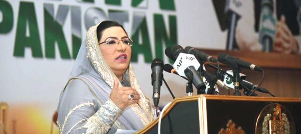 Reforms Firdous Ashiq Awan PTI PTI government pakistantehreek-e-insaf naeemul haque PTI one year development