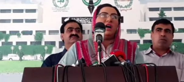 Pakistani cinema firdous firdous ashiq awan indian movie special assistant indian held jammu kashmir occupied kashmir
