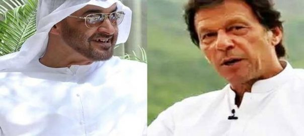 Imran-Zayed