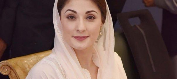 ECP Election Commission of Pakistan judgement Plea Maryam nawaz party post PML-N vice president