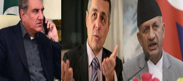 FM Shah mehmood Qureshi IoK issue Indian Occupied Kashmir Kashmir issue FM Qureshi