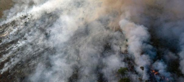 Warplanes Amazon Brazil military fighting fires water