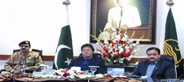 Punjab CM, apprises, PM Imran Khan, overall, situation, province