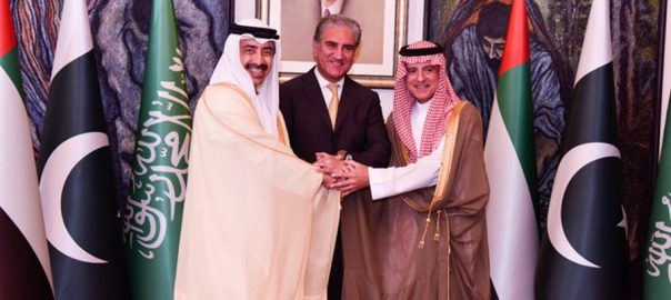 UAE, Saudi, foreign ministers, discuss, bilateral, issues, FM Qureshi