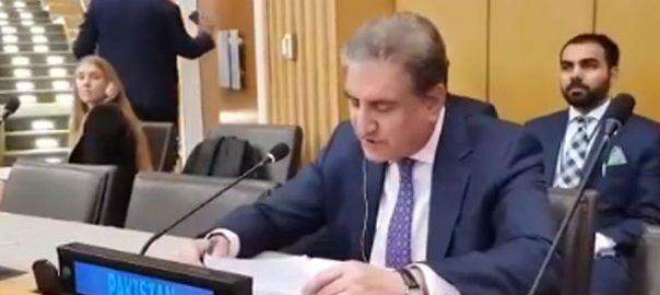 FM Shah Mehmood Qureshi Indian Occupied Kashmir Kashmir issue UNGA UNSC