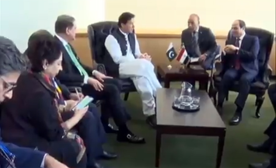 PM Imran Khan apprises Egyptian president of human rights violations in IOK