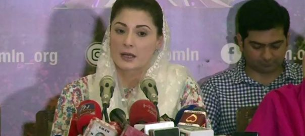Plea, Maryam Nawaz, appointment, PML-N, vice-president, dismissed