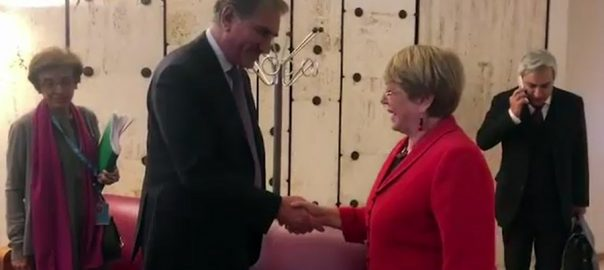 FM Qureshi, apprises, UNHCHR, Michelle Bachelet, rights, violations, IOK