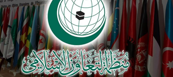 OIC HRs human rights violations IoK Indian Occupied Kashmir Organization of Islamic Conference