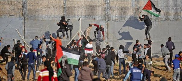 Palestinian-youth-martyred