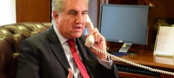 FM Qureshi, informs, Icelandic, counterpart, situation, curfew, IOK