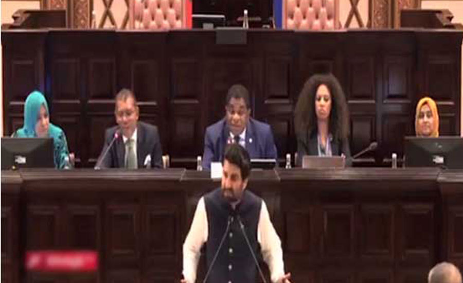 Pakistan highlights Kashmir issue in speakers' conference in Maldives